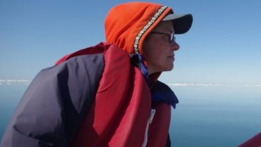 Rebecca Bentzen conducting fieldwork in the Chukchi Sea. Wildlife Conservation Society plans to continue nesting surveys and studies in coming years. Photo courtesy of Sally Andersen.