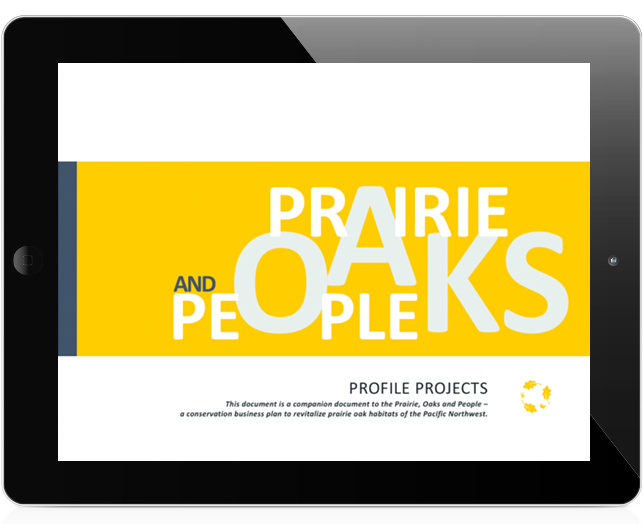 Oak Plan Profile Projects 2017