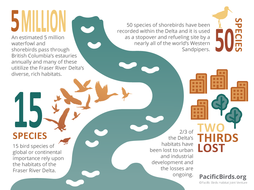 Coastal Estuaries By the Numbers.